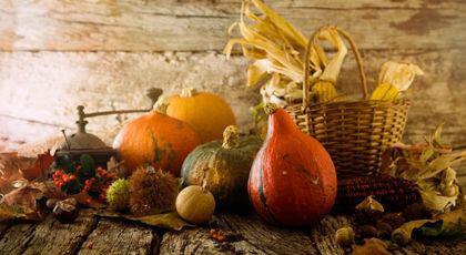 8 Chic Vintage Thanksgiving Decor Idea